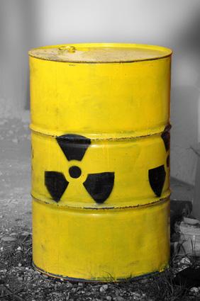 Rebecca Harms von den Grünen kritisiert Atommüll Endlager-Strategie
