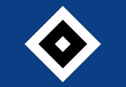 HSV Fußballtrainer Oenning wurde entlassen